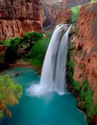 Image result for havasu falls arizona
